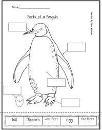 Penguins on Pinterestparts of a penguin. an amazing website full of resources for Kindergarten teachers/parents
