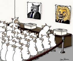 Image result for wake up sheeple gif