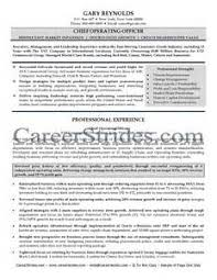 Monster Resume Services  margarita rosa de francisco  monsters     Resume Writing in New York  NYC by Resume Directions