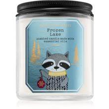 Bath & Body Works Frozen <b>Lake ароматическая свеча</b> I. | notino.ru