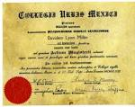 Images & Illustrations of diploma