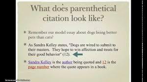 parenthetical citations for argumentative essay   youtubeparenthetical citations for argumentative essay
