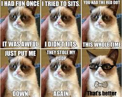 Grumpy Cat Quotes For Facebook. QuotesGram via Relatably.com