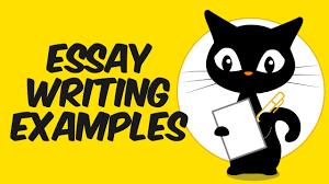 essay writing examples essay writing examples