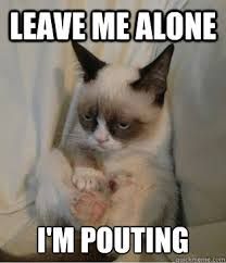 leave me alone i'm pouting - grumpy cat sits - quickmeme via Relatably.com