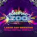 Electric Zoo 2011: The Artists - Made Event