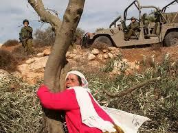 ذكرى الاض الفلسطينيه