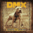 Get it on the Floor by DMX