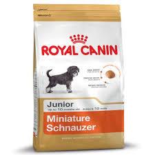 <b>Royal Canin Miniature Schnauzer</b> Puppy | Top deals!