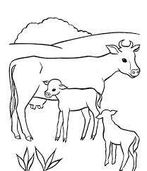 Small Picture Cow coloring pages for preschoolers ColoringStar