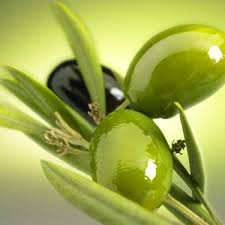 فوائد الزيتـــــــــــــــــون الأسود والأخضر.......