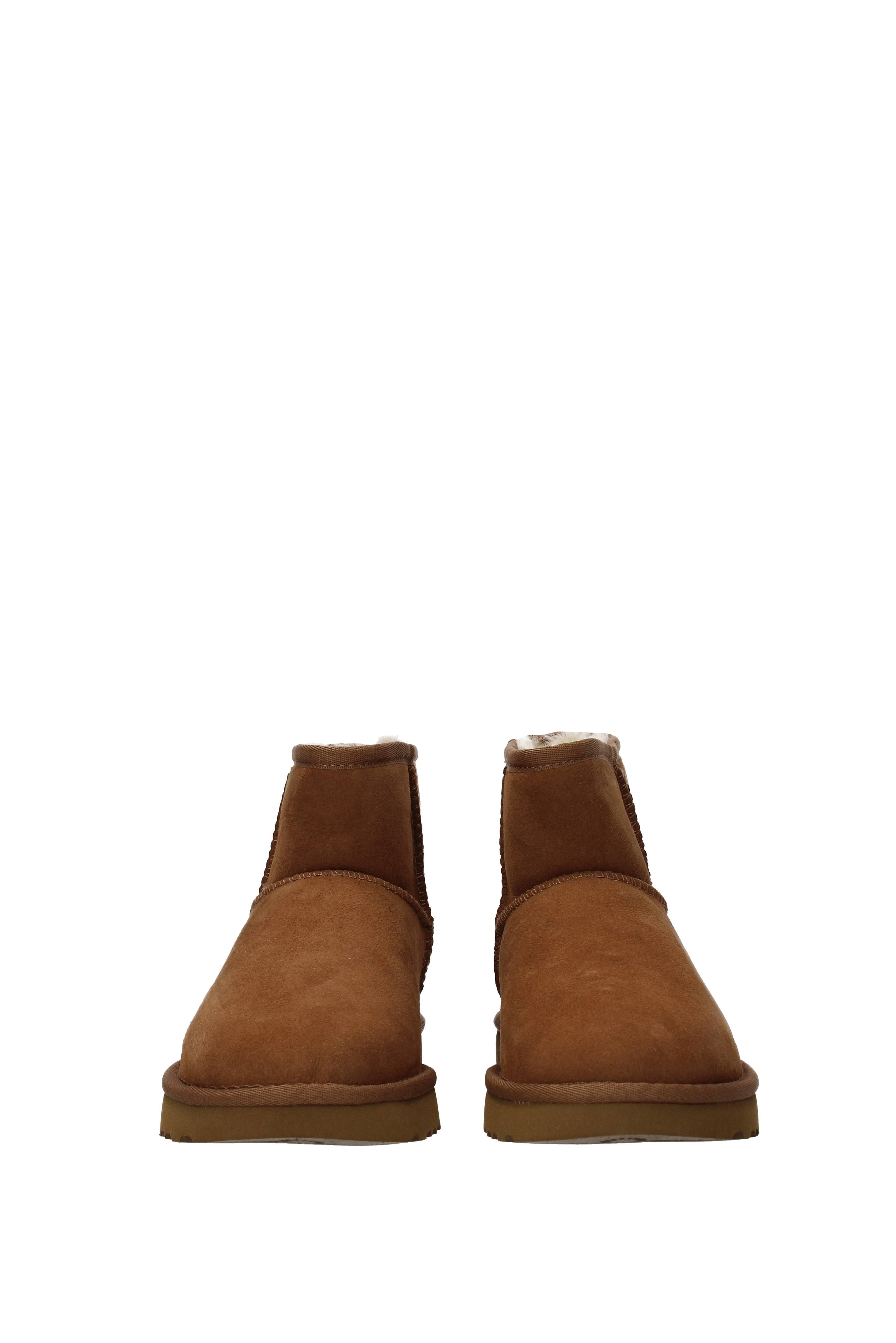 Ugg 3 Chestnut Mini Boot Cognac uk 36 5 Ii Classic U0AwqUr