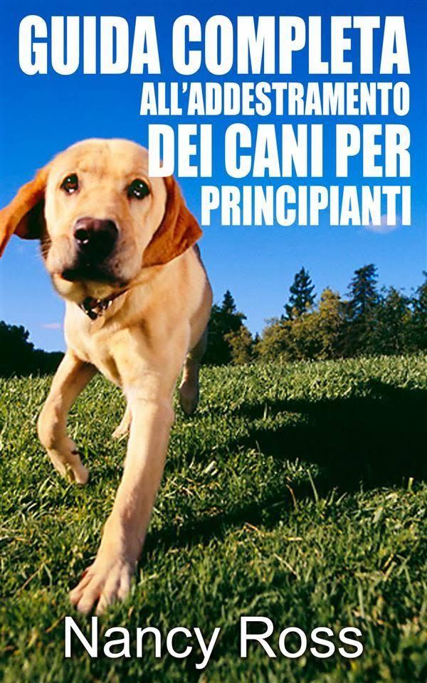 Completa Cani Guida Per Dei Principiantiebook Alladdestramento tQrBshdxC