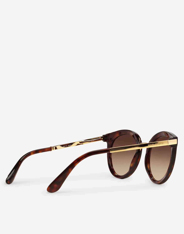 Gradient Gafas Havana Brown Sol Dg De 4268 x4qpYgw
