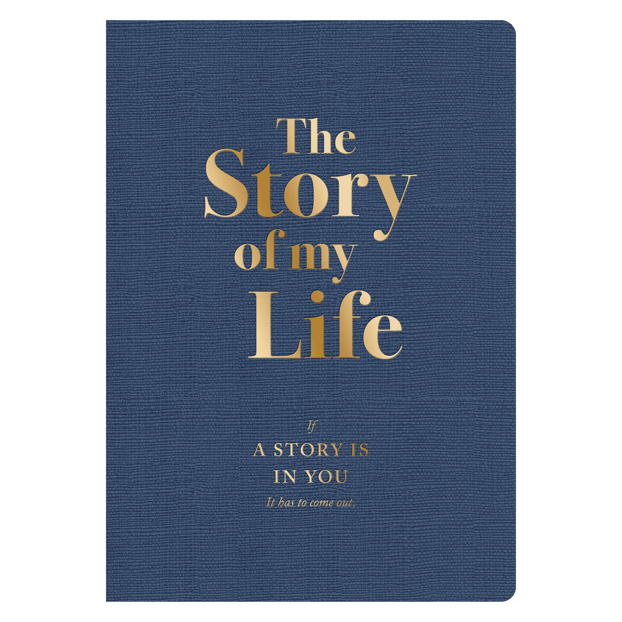 Piccadilly The Story of My Life Activity Journal