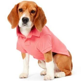 Polo Ralph Piqué S Para Pink Cotton Perros En Lauren Talla Dolce wwBrZq6x